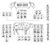 scheme of beef cuts for steak... | Shutterstock .eps vector #242150539