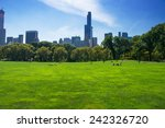central park at sunny day  new... | Shutterstock . vector #242326720