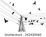 illustration with electrical... | Shutterstock .eps vector #242430460