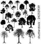 set of tree silhouettes from... | Shutterstock . vector #24253939