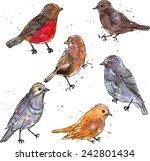 set of watercolor drawing birds ... | Shutterstock .eps vector #242801434