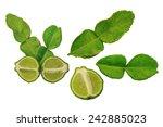 kaffir lime  aka. makrut lime ...   Shutterstock . vector #242885023