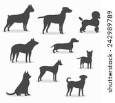 dogs icons set of different... | Shutterstock .eps vector #242989789