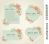 collection of romantic vintage... | Shutterstock .eps vector #243000409