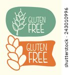 gluten free design  vector... | Shutterstock .eps vector #243010996
