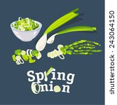 spring onion set  vector... | Shutterstock .eps vector #243064150