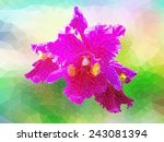 all triangle polygon vector...   Shutterstock .eps vector #243081394