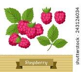 set of various stylized ripe... | Shutterstock .eps vector #243126034