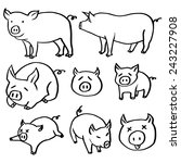 vector set of pig | Shutterstock .eps vector #243227908