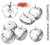 vector set of hand drawn apples | Shutterstock .eps vector #243249976
