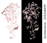 spring season blossom... | Shutterstock .eps vector #243268699