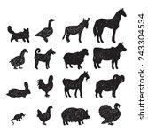 domestic farm animals black... | Shutterstock .eps vector #243304534