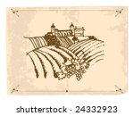 vineyard | Shutterstock .eps vector #24332923