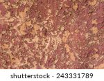 top view of red dry soil... | Shutterstock . vector #243331789