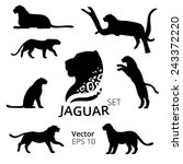 Jaguar set vector