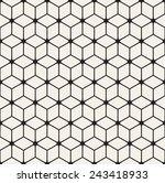vector seamless pattern. modern ... | Shutterstock .eps vector #243418933
