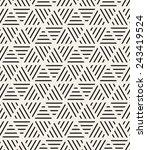 vector seamless pattern. modern ... | Shutterstock .eps vector #243419524