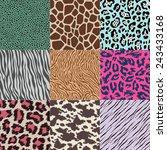repeated wildlife animal skin... | Shutterstock .eps vector #243433168