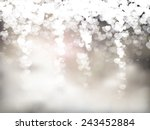 valentine's day vector... | Shutterstock .eps vector #243452884
