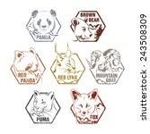 set of wild animal labels... | Shutterstock .eps vector #243508309