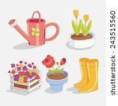 garden tools and flowers in the ... | Shutterstock .eps vector #243515560
