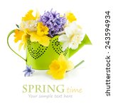 spring flowers in green... | Shutterstock . vector #243594934