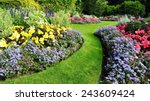 colourful flowerbed and grass... | Shutterstock . vector #243609424