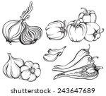 hand drawn vegetables set.... | Shutterstock .eps vector #243647689