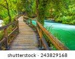 boardwalk in the park | Shutterstock . vector #243829168