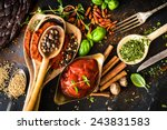 tomato sauce with spices and... | Shutterstock . vector #243831583