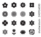 flower icons. vector... | Shutterstock .eps vector #243916030