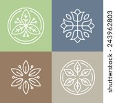 vector floral icons and logo... | Shutterstock .eps vector #243962803