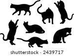 Stock vector set of seven cat vector silhouette 2439717