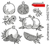 hand drawn decorative... | Shutterstock . vector #244027579