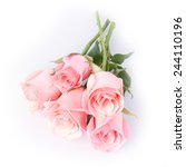 Stock photo pink rose flower on white background 244110196