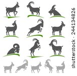 goat set. vector | Shutterstock .eps vector #244134826
