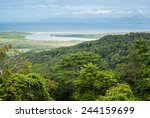 Daintree National Park  Cape...