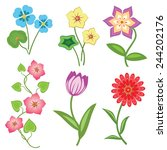 flower set on white background. ... | Shutterstock . vector #244202176