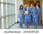 medical students walking... | Shutterstock . vector #244305520