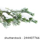 The Snow Covered Branch Of A...