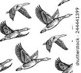 Flying Geese. Hand Drawn...