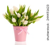 White Tulips In Pink Bucket...