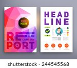 set of flyer  brochure design... | Shutterstock .eps vector #244545568