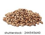 heap of hemp seeds on white... | Shutterstock . vector #244545640