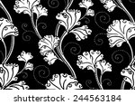 black and white background ... | Shutterstock . vector #244563184