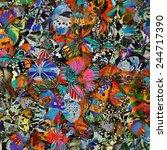 Butterfly  Beautiful Pattern...