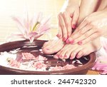 legs  flowers  petals and... | Shutterstock . vector #244742320