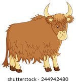 Funny Image Of Yak On Isolated...