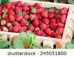 Fresh Strawberries In Wooden...