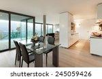 modern apartment  domestic... | Shutterstock . vector #245059426